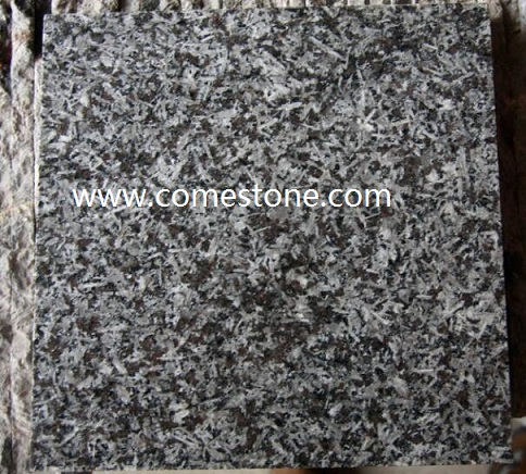 ST. Louis Granite Tile